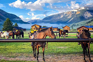 The Red Rock Ranch - book prime summer now